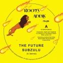 Roots Addis Muzik 702