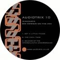Audiotrix 10 RP
