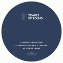 Temple Of Sound 03