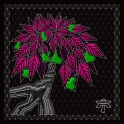 Audiotrix 22 LP