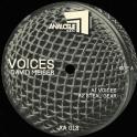 Analogue Audio 18
