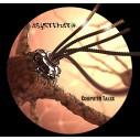 Asystematik 01 *