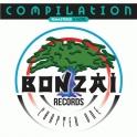 Bonzai Vinyl 2020017